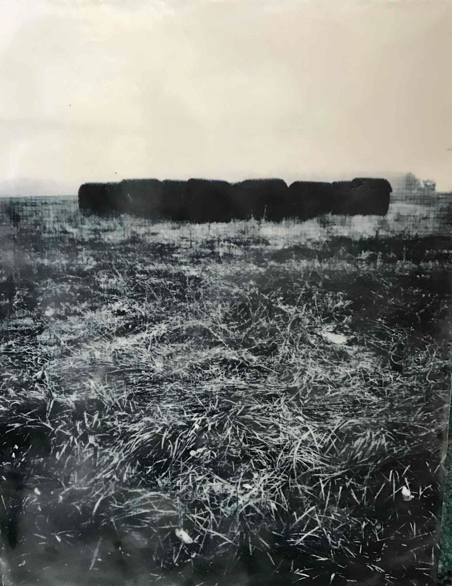 "Melissa Rian | Harvest On Six | Encaustic photo transfer (11"" x 14"")"